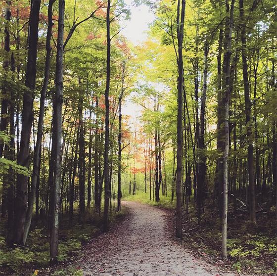 Clarkson Trail