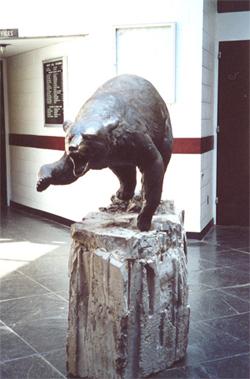 SUNY Potsdam Bear