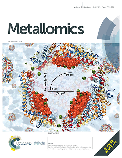 Research by SUNY Potsdam Professor Dr. Fadi Bou-Abdallah was recently featured as the cover story in the journal Metallomics.