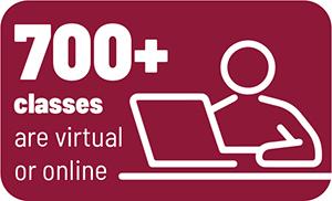 Online Classes Icon Image