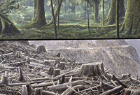 Environmental Impact Art Image 2016