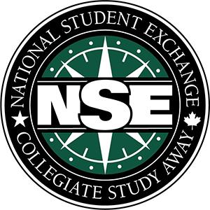 NSE Logo