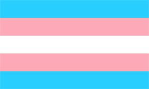 Transgender Flag Image